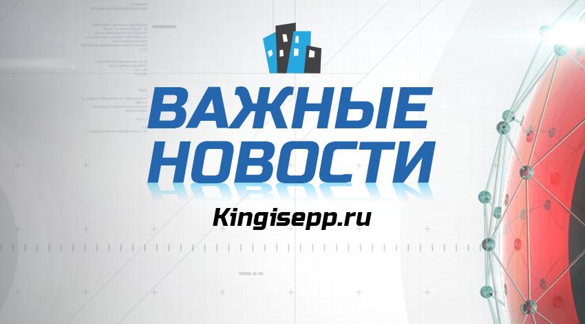 земельный аукцион волосовский район февраль 2017