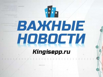 Частные объявления плотник в кингисеппе дать объявление о продаже подержаных авто